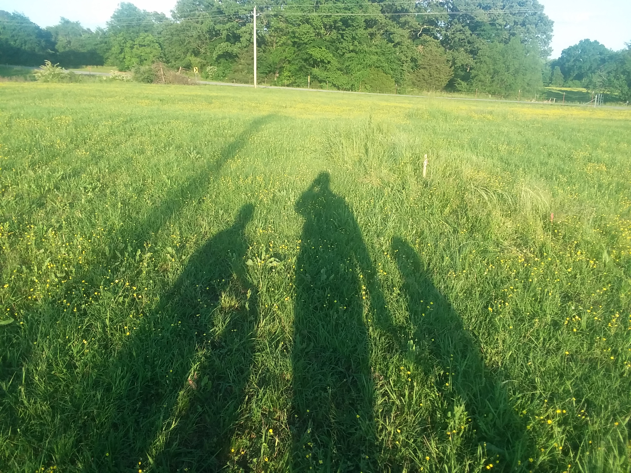 Family shadow on Dad's Bait Shop property